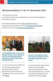 Screenshot des Newsletters vom 18. November 2016